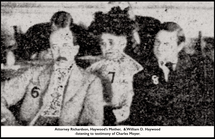HMP, Richardson Mother of BBH, Haywood, NYTb July 16, 1907